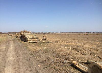 15 1 400x284 - Pozyskiwanie Drewna