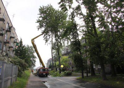 151 400x284 - Wycinka i Pielęgnacja Drzew na Terenach Miejskich
