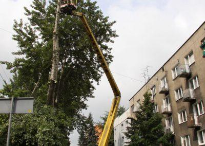 161 400x284 - Wycinka i Pielęgnacja Drzew na Terenach Miejskich