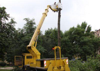 171 400x284 - Wycinka i Pielęgnacja Drzew na Terenach Miejskich