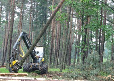 18 2 400x284 - Wycinka - Harvester Ponsse ERGO 8W