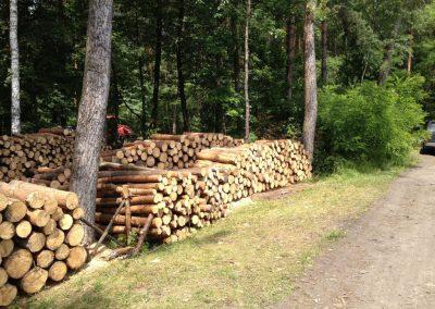 19 1 400x284 - Pozyskiwanie Drewna
