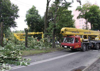191 400x284 - Wycinka i Pielęgnacja Drzew na Terenach Miejskich