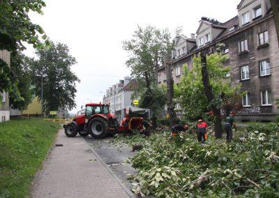 20 2 400x284 - Wycinka i Pielęgnacja Drzew na Terenach Miejskich