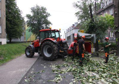 211 400x284 - Wycinka i Pielęgnacja Drzew na Terenach Miejskich