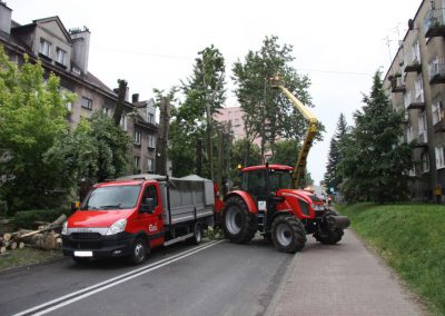 26 400x284 - Wycinka i Pielęgnacja Drzew na Terenach Miejskich