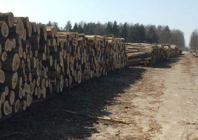 27 1 400x284 - Pozyskiwanie Drewna
