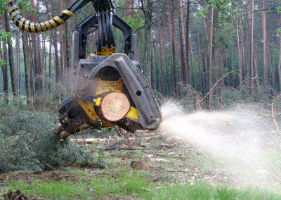 27 2 400x284 - Wycinka - Harvester Ponsse ERGO 8W
