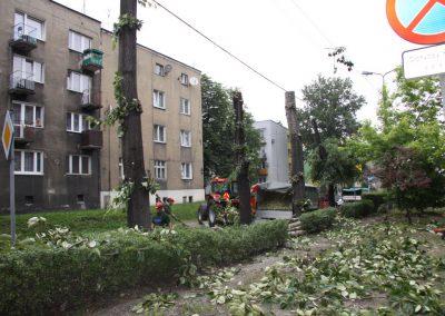 27 400x284 - Wycinka i Pielęgnacja Drzew na Terenach Miejskich