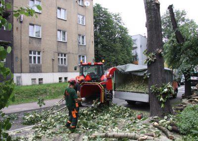 28 1 400x284 - Wycinka i Pielęgnacja Drzew na Terenach Miejskich