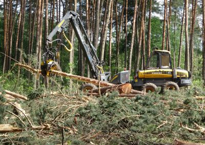 29 2 400x284 - Wycinka - Harvester Ponsse ERGO 8W