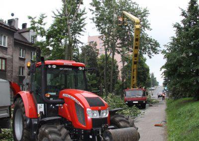 30 1 400x284 - Wycinka i Pielęgnacja Drzew na Terenach Miejskich