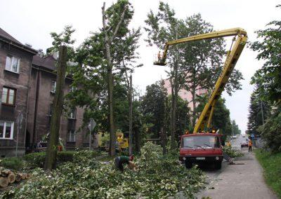 311 400x284 - Wycinka i Pielęgnacja Drzew na Terenach Miejskich
