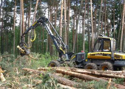 32 1 400x284 - Wycinka - Harvester Ponsse ERGO 8W