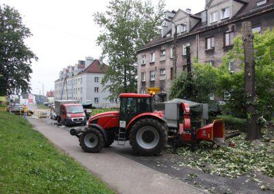 321 400x284 - Wycinka i Pielęgnacja Drzew na Terenach Miejskich