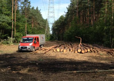 33 1 400x284 - Pozyskiwanie Drewna