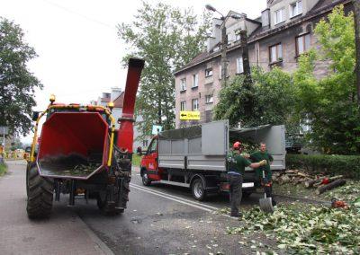 331 400x284 - Wycinka i Pielęgnacja Drzew na Terenach Miejskich