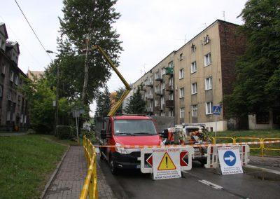 34 400x284 - Wycinka i Pielęgnacja Drzew na Terenach Miejskich
