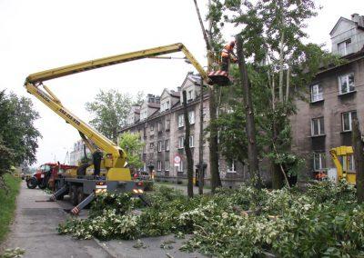 341 400x284 - Wycinka i Pielęgnacja Drzew na Terenach Miejskich