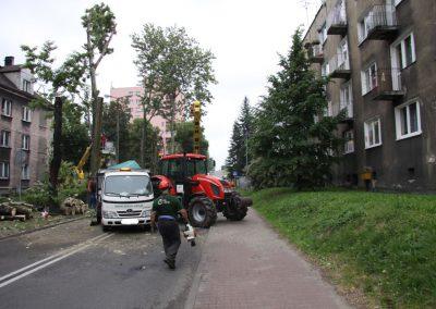 35 400x284 - Wycinka i Pielęgnacja Drzew na Terenach Miejskich