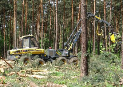 36 1 1 400x284 - Wycinka - Harvester Ponsse ERGO 8W