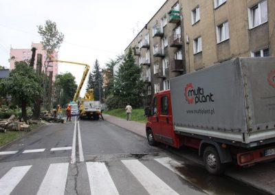 40 400x284 - Wycinka i Pielęgnacja Drzew na Terenach Miejskich