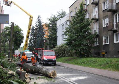 421 400x284 - Wycinka i Pielęgnacja Drzew na Terenach Miejskich