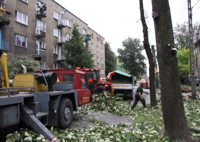 441 400x284 - Wycinka i Pielęgnacja Drzew na Terenach Miejskich