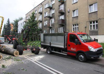 49 400x284 - Wycinka i Pielęgnacja Drzew na Terenach Miejskich