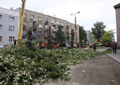 531 400x284 - Wycinka i Pielęgnacja Drzew na Terenach Miejskich