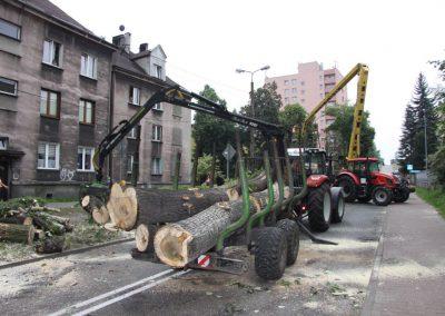 541 400x284 - Wycinka i Pielęgnacja Drzew na Terenach Miejskich