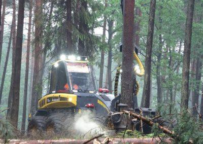 6 1 1 400x284 - Wycinka - Harvester Ponsse ERGO 8W