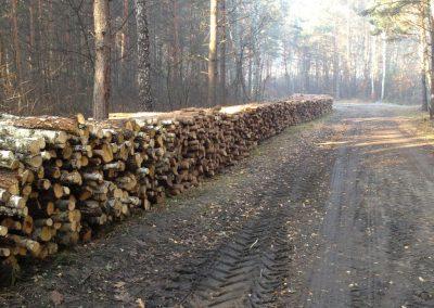 63 400x284 - Pozyskiwanie Drewna