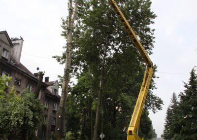 64 400x284 - Wycinka i Pielęgnacja Drzew na Terenach Miejskich