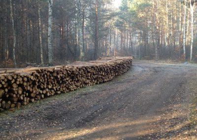 73 400x284 - Pozyskiwanie Drewna