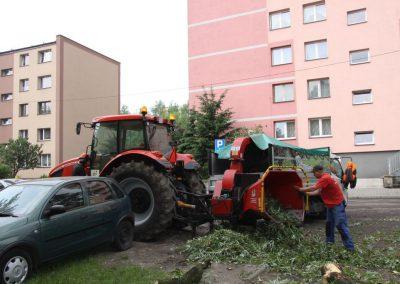 83 1 400x284 - Wycinka i Pielęgnacja Drzew na Terenach Miejskich