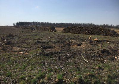 9 1 1 400x284 - Pozyskiwanie Drewna