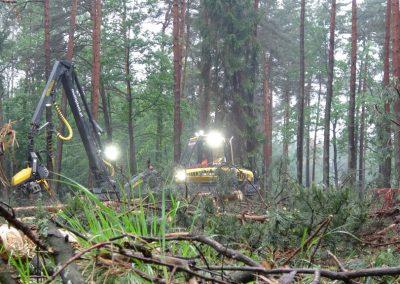 9 1 2 400x284 - Wycinka - Harvester Ponsse ERGO 8W