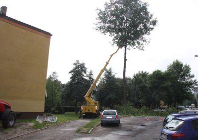 9 2 400x284 - Wycinka i Pielęgnacja Drzew na Terenach Miejskich