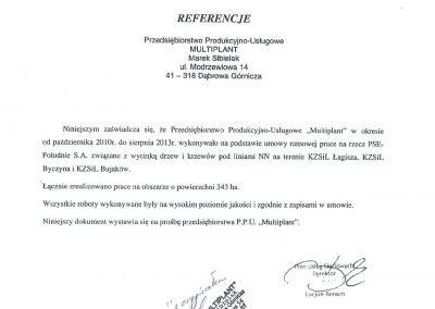 PSE 2013 400x284 - Referencje