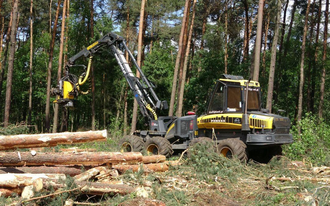 Wycinka – Harvester Ponsse ERGO 8W